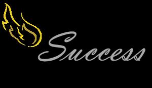Success N Fundraising